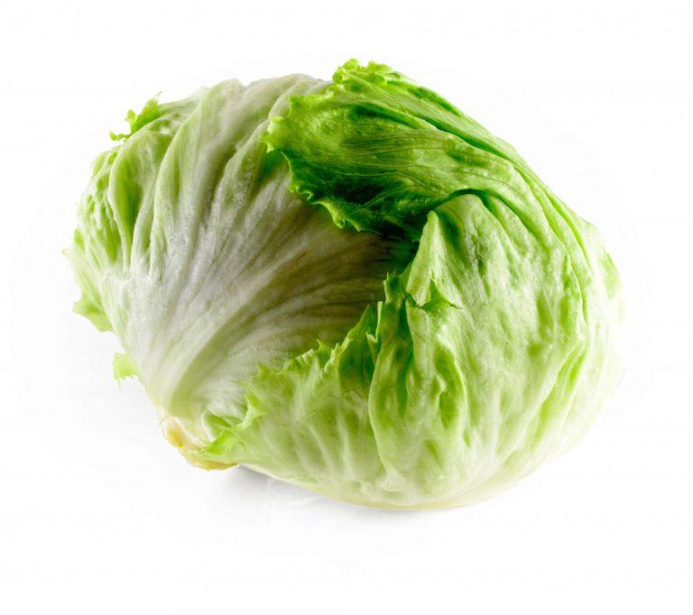 mzr3ty_iceberg_lettuce