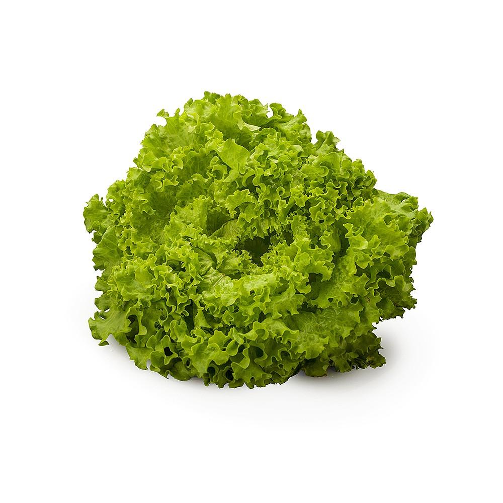 Mzr3ty green batavia